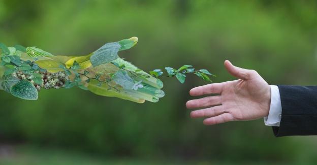 Supply Chain Sustainability